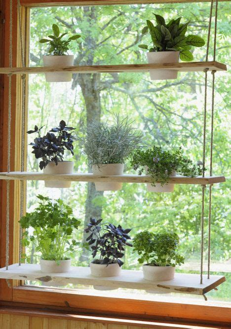 Plant Window by Hanging Plant Holder For A Window And Holds Lots