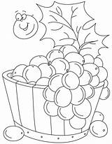 Coloring Pages Grapes Grape Vine Tub Pic Printable Clipart Getcolorings Fruit Library Popular sketch template