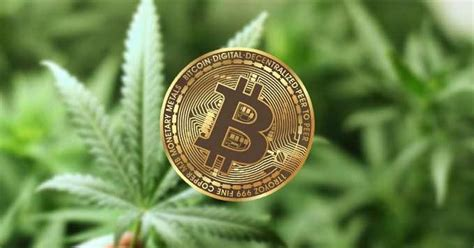 Bitcoin payments are mostly anonymous Leading Cannabis Brand High Times Becomes the First IPO Ever to Accept Bitcoin and Ethereum