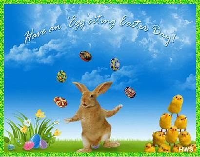 Easter Egg Citing