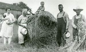 I love the field and the kid on the hay stack! | late 1800 ...