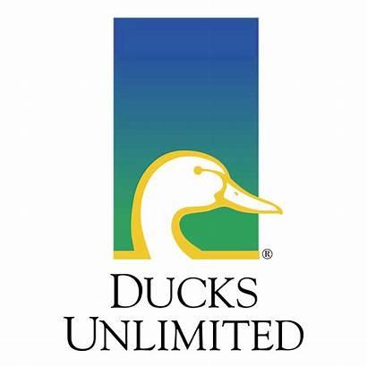 Unlimited Ducks Background Transparent Svg Vector Logos
