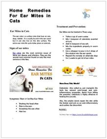 how to treat ear mites in cats home remedy for ear mites in cats