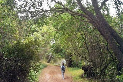 santiago oaks regional park spring hike spring hiking