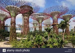 Singapore, Gardens by the Bay, Marina Bay Sands Resort ...
