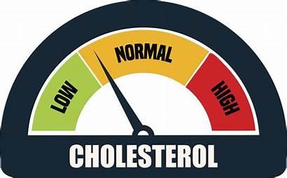 Cholesterol Meter Vector Clip Illustration Test Gauge