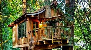 Download Cool Tree Houses | slucasdesigns.com