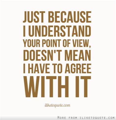 Just Because I Understand Your Point Of View, Doesn't Mean