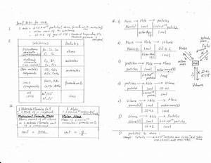 Worksheet  Cells Alive Worksheet Answers  Grass Fedjp