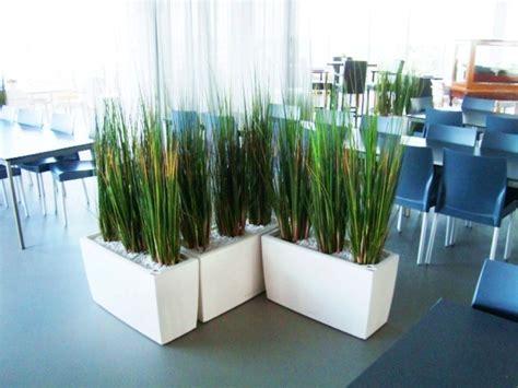 Fausse Plante Exterieur Plantes Exterieur Sans Entretien Pothos With Plantes Exterieur Sans Entretien