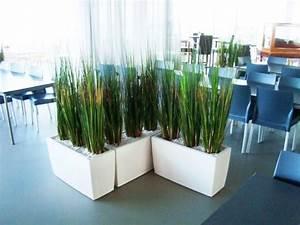 Plante Exterieur Artificielle : acheter ou louer des plantes artificielles ~ Teatrodelosmanantiales.com Idées de Décoration