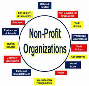 What is a nonprofit organization? Definition and meaning ...