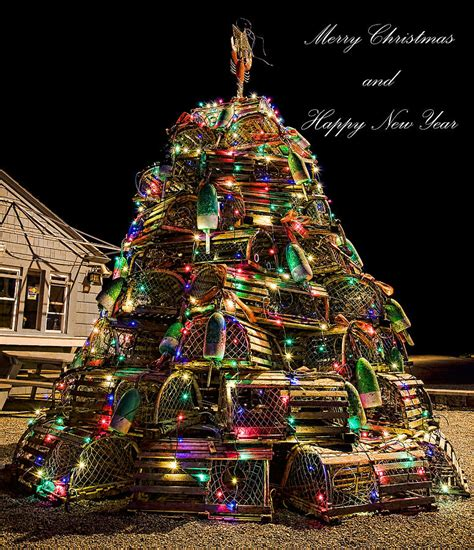 maine xmas lobster qi talk forum view topic happy yule 2012