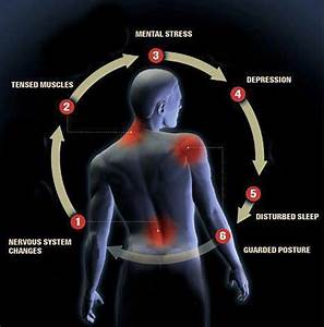 Ankylosing Spondylitis Chart Using Pilates To Reduce Muscle Tension Stress