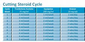 Advanced Steroid Cycles Examples