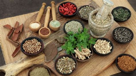 cuisine ayurveda the ayurvedic diet to improve your health and well being