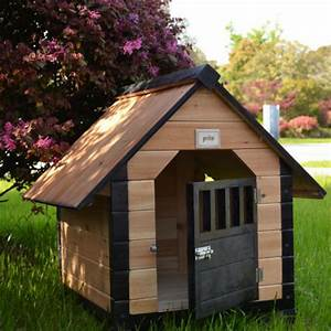 solid wooden cages dog kennel cat litter luxury dog house With luxury dog pens
