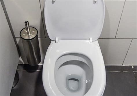 comment recurer les toilettes 17 meilleures id 233 es 224 propos de cuvette wc sur cuvette de toilette cuvette toilette