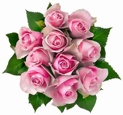 Clipart Bouquet Background Flowers Pink Roses Transparent