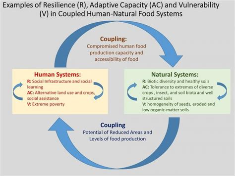Defining Resilience, Adaptive Capacity, and Vulnerability