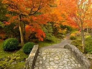 Garten Im Herbst : gartentipps f r den herbst ~ Watch28wear.com Haus und Dekorationen