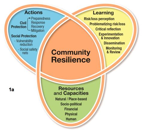 cultivating resilience community recovery casa loma