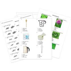 printable culinary arts worksheets
