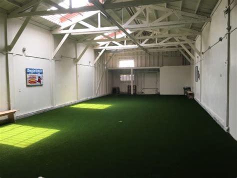 indoor dog park grand opening   beer oakland