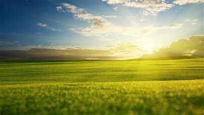 Morning Nature Spring Season Wallpapers Grass Sun