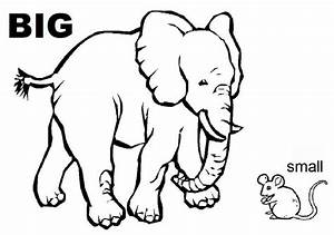 Opposites Activity Sheets For Kids – Color On Pages ...