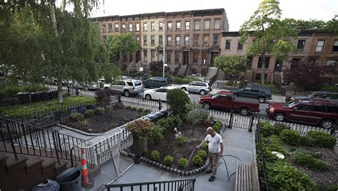Carroll Gardens, Choose Only One Setback Or Height