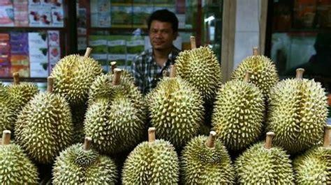 harga durian musim mendatang dijangka meningkat