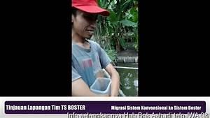 Migrasi Sistem Konvensional Ke Sistem Boster