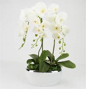 Kunstblumen Orchideen Topf : gesteck orchideen wei kunstblumen topf fensterschmuck blumengesteck tischdeko 4 761449132355 ebay ~ Whattoseeinmadrid.com Haus und Dekorationen