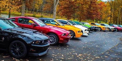 Is This The Best Fall Picture For Ford Mustang