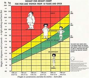 Vetpercentage, calculator - bereken uw lichaamsvet percentage