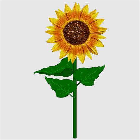 sonnenblumen meine internetseite