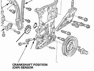 2012 Honda Crv Crank Shaft Sensor - Honda-tech