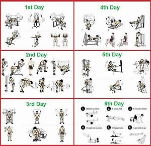 The Perfect 6 Day Beginner U0026 39 S Bodybuilding Program