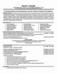 Example For Resume Skills Plumber Resume Example