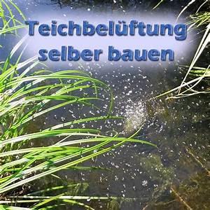 Poolabdeckung Winter Selber Bauen Wie : teichbel ftung f r sommer und winter selber bauen ~ A.2002-acura-tl-radio.info Haus und Dekorationen