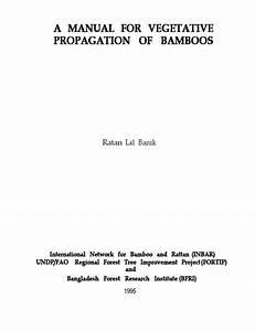A Manual For Vegetative Propagation Of Bamboos