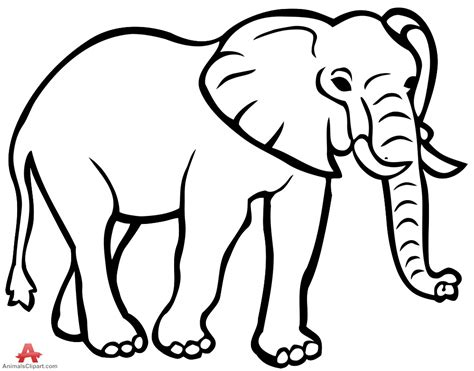 Coloring Gajah by Elephant Outline Drawing Clipart Clip Library