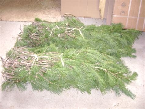 wisconsin christmas wreaths wholesalefund raisingfresh