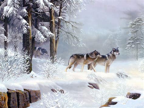 Snow Animal Wallpaper - winter snow animals wolves wallpaper allwallpaper in