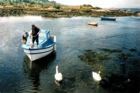 Fishing Boat Hire Botany Bay by Kenmare Ireland Modern Cottage In Picturesque