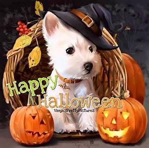 Lustige Halloween Sprüche : happy halloween bild 24877 gbpicsonline ~ Frokenaadalensverden.com Haus und Dekorationen