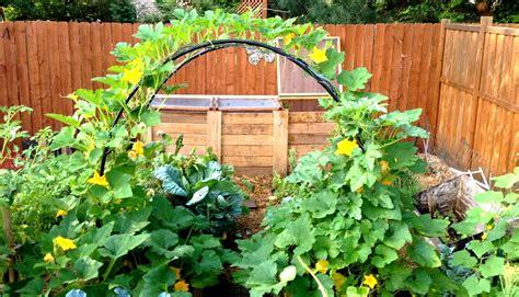 vegetable garden plans and designs cozy outdoor bench design feats exquisite vegetable garden with big pot idea feat metal arched