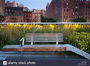Bench at High Line Park in New York City with buildings in ...