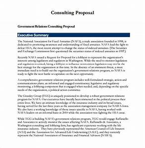 9+ Sample Consultant Proposals Sample Templates